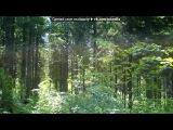 «Природа Север Области» под музыку  Застольные украинские песни  - 18. Picrolla